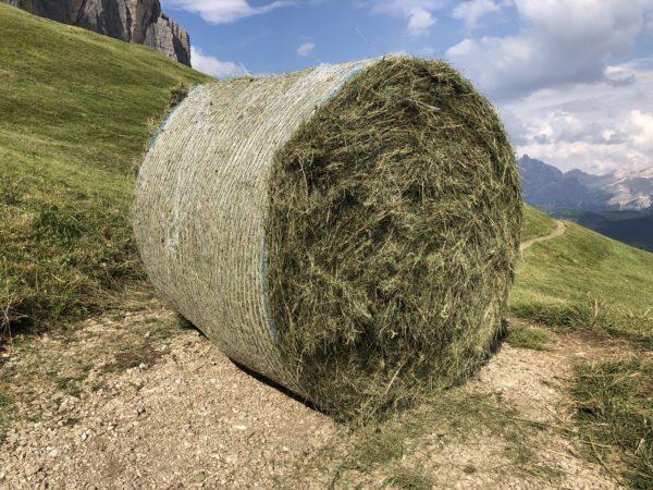 Balla spaziale delle Dolomiti