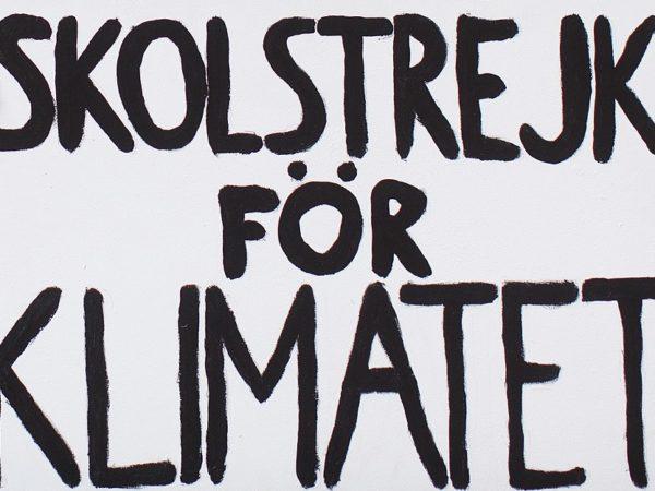 Greta Thunberg a Roma – Il punto è passare dal Come al Cosa