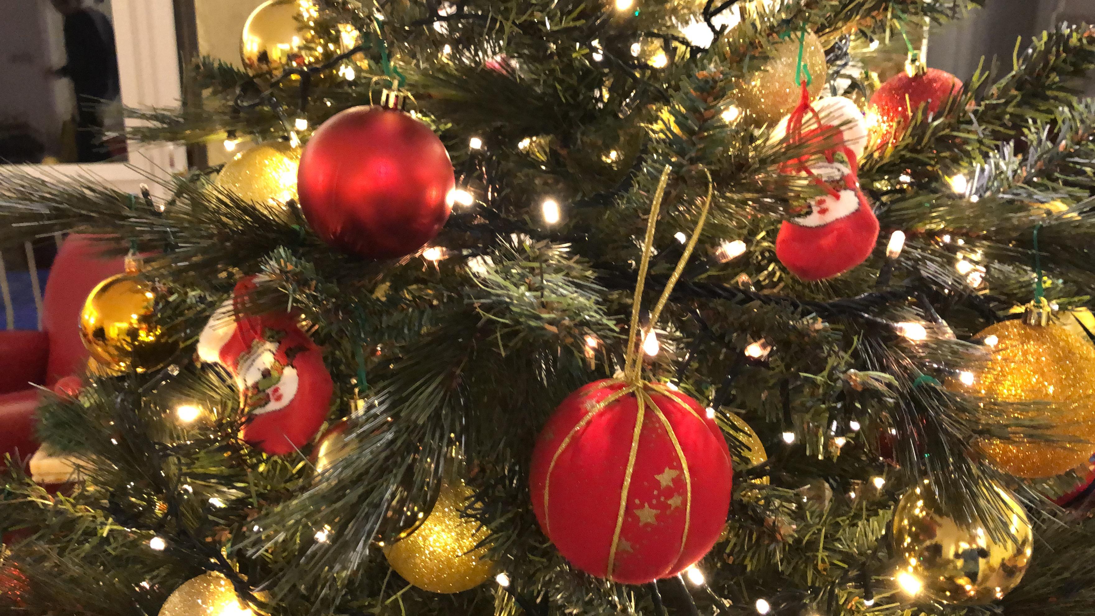 Auguri di Buon Natale da FabioOrecchini.it – Obiettivo Zero Emissioni