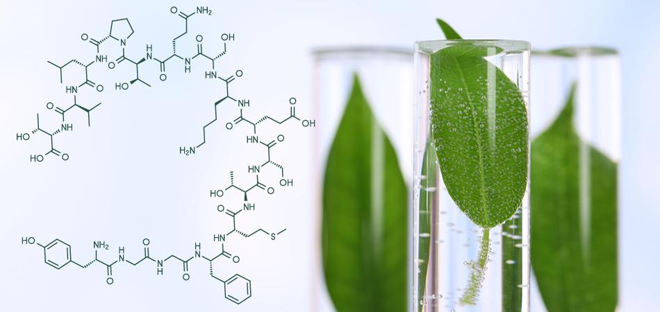 Coronavirus e futuro chimica verde