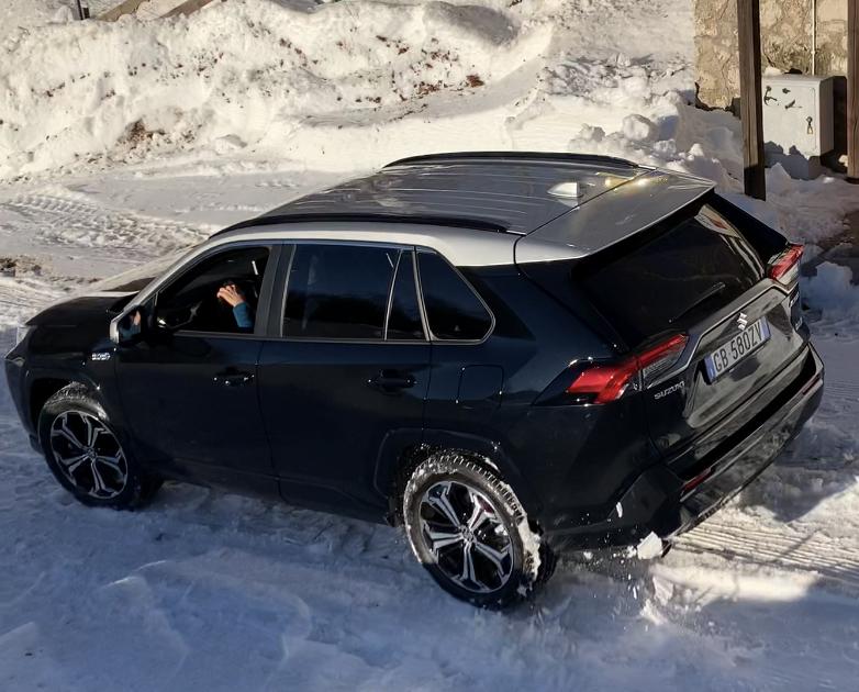 Suzuki Across Plug-in Hybrid dinamica neve posteriore