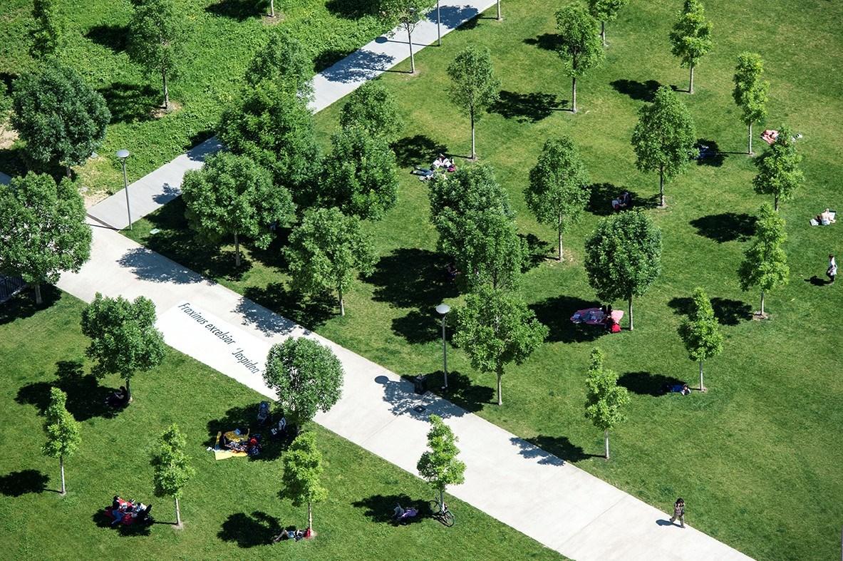 Volvo Italia con il parco BAM Biblioteca degli Alberi Milano per il terzo anno